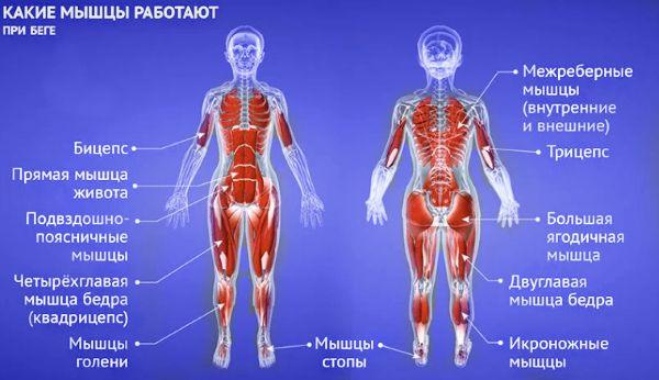Многие спортсмены используют бег для улучшения рельефа мышц