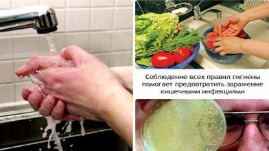 Норовирусная инфекция - наиболее распространенная среди пищевых инфекций