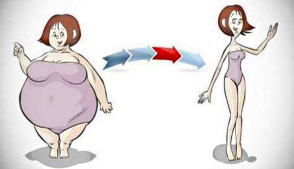 Жир на животе причины появления у женщин