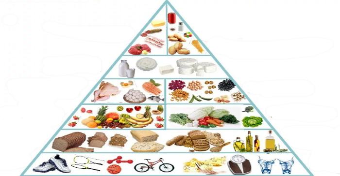 основа здоровья – это питание