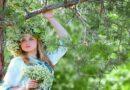 Дендротерапия: исцеление от деревьев